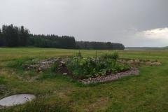 Der Garten an der Kläranlage wäschst und gedeiht