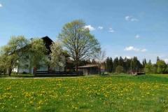 Frühlingswiese vor dem Haus
